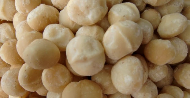Macadamia's rauw